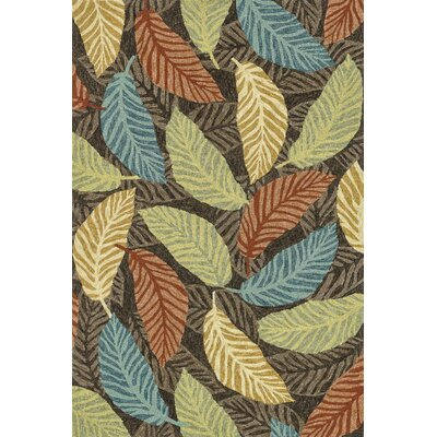 Tropez Hand-Hooked Brown/Green Indoor/Outdoor Area Rug Rug Size: 76 x 96