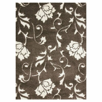 Enchant Espresso/Ivory Area Rug Rug Size: Rectangle 310 x 57
