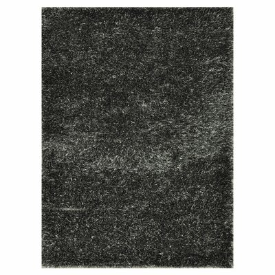 Vida Hand-Woven Black/Gray Area Rug Rug Size: Rectangle 76 x 96