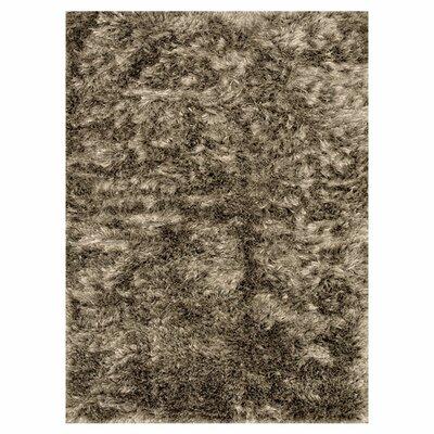 Vida Hand-Woven Taupe Area Rug Rug Size: 36 x 56