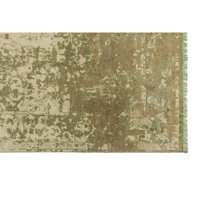 Ashton Hand-Knotted Sage Area Rug Rug Size: Rectangle 12 x 15