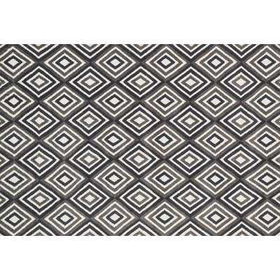 Mazurek Gray/Charcoal Area Rug Rug Size: Rectangle 76 x 96