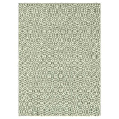 Terra Hand-Woven Jade Indoor/Outdoor Area Rug Rug Size: 23 x 39