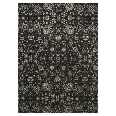Journey Black/Silver Area Rug Rug Size: 33 x 53