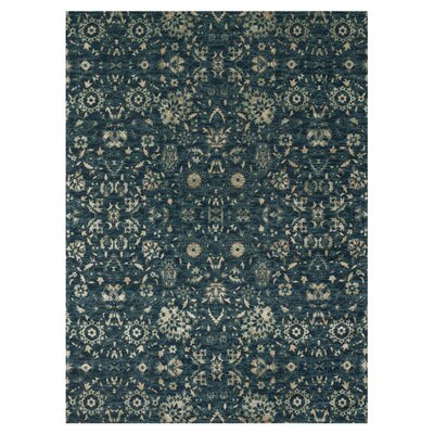 Hiram Rug Size: Rectangle 5 x 76