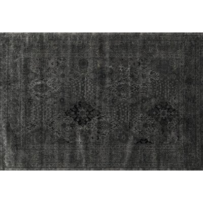 Nyla Iron Black Area Rug Rug Size: 76 x 105