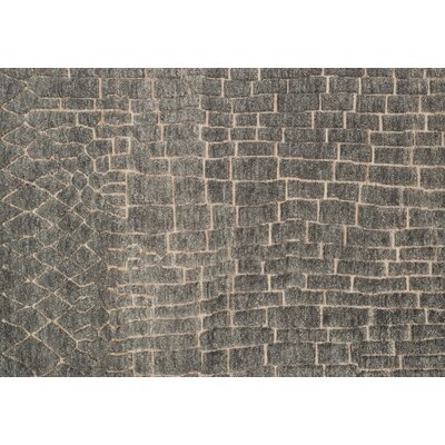 Tanzania Slate Area Rug Rug Size: Rectangle 4 x 6