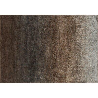 Elton Granite Area Rug Rug Size: 92 x 122