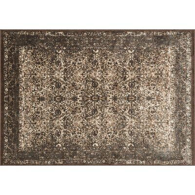 Elton Bronze/Slate Area Rug Rug Size: 52 x 77