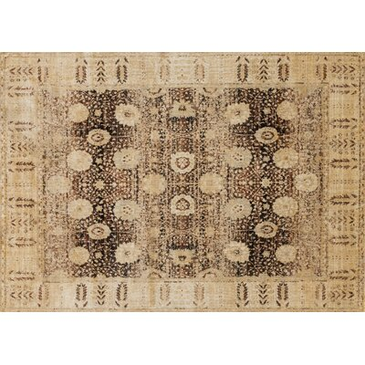 Anastasia Coffee/Gold Area Rug Rug Size: 37 x 57