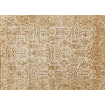 Zehner Ivory/Gold Area Rug Rug Size: Rectangle 37 x 57