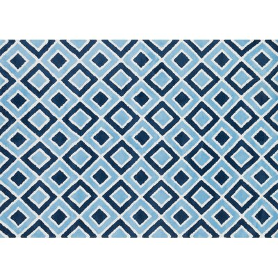 Zoey Blue Area Rug Rug Size: 2 x 3