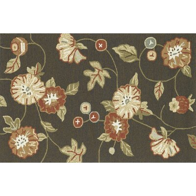 Francesca Hand-Hooked Coffee/Green/Ivory Area Rug Rug Size: 36 x 56