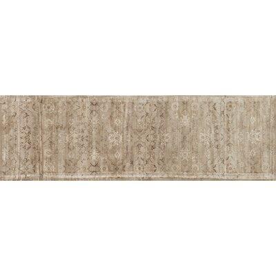 Nyla Taupe Area Rug Rug Size: Runner 24 x 79
