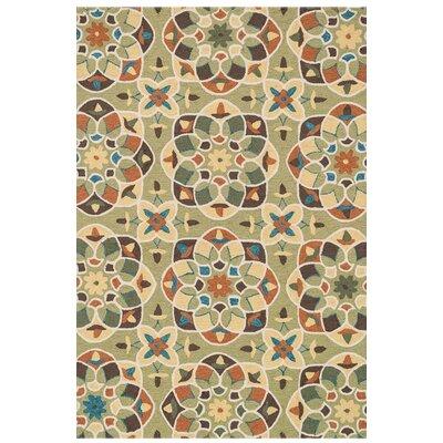 Francesca Hand-Woven Green/Spice Area Rug Rug Size: 36 x 56