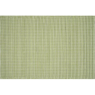 Wonder Hand-Woven Green Area Rug Rug Size: Rectangle 23 x 39