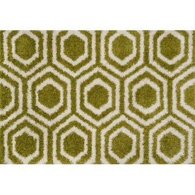 Barcelona Shag Green/Ivory Area Rug Rug Size: 39 x 56
