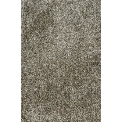 Carrera Shag Hand-Tufted Sage Area Rug Rug Size: Rectangle 36 x 56
