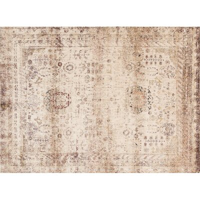 Anastasia Ivory/Brown Area Rug Rug Size: Rectangle 53 x 78