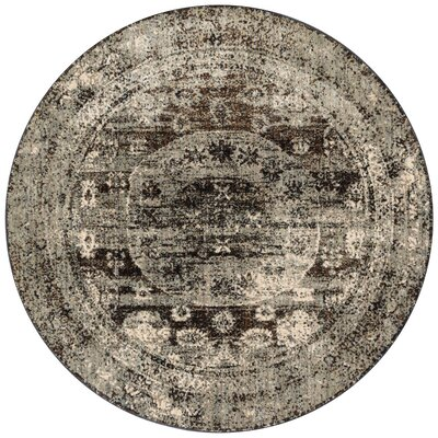 Anastasia Granite/Brown/Black Area Rug Rug Size: Round 96