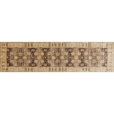 Zehner Coffee/Gold Area Rug Rug Size: Runner 27 x 10
