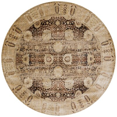 Zehner Coffee/Gold Area Rug Rug Size: Round 710