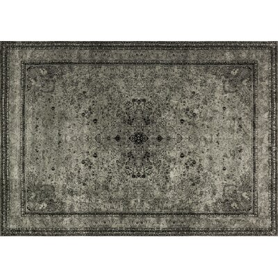 Keever Gray Area Rug Rug Size: Rectangle 12 x 15