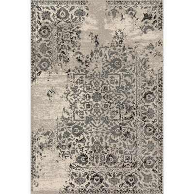 Aparicio Ivory/Charcoal Area Rug Rug Size: Rectangle 77 x 106
