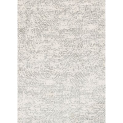 Gray Area Rug Rug Size: Rectangle 27 x 4