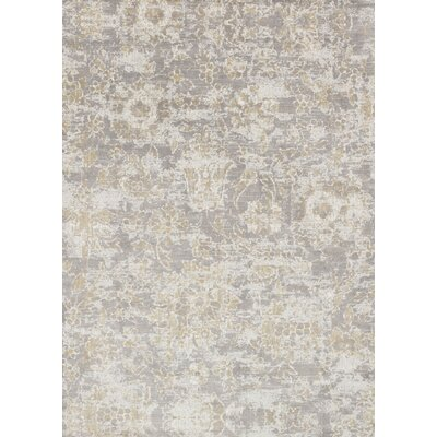 Gray Area Rug Rug Size: Rectangle 67 x 92
