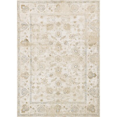 Area Rug Rug Size: Rectangle 39 x 59