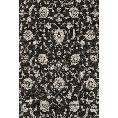 Emory Black Area Rug Rug Size: Rectangle 310 x 57