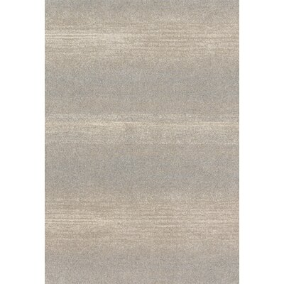 Aparicio Silver Area Rug Rug Size: Rectangle 92 x 127