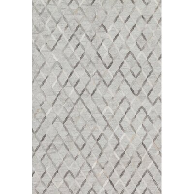 Dorado Hand-Woven Gray Area Rug Rug Size: Rectangle 5 x 76