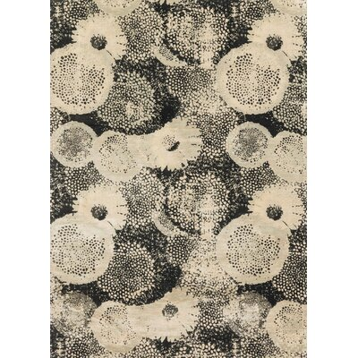 Journey Black/Beige Area Rug Rug Size: 33 x 53