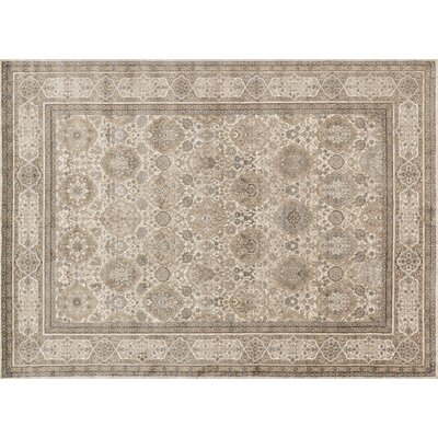 Century Sand/Taupe Area Rug Rug Size: 37 x 57