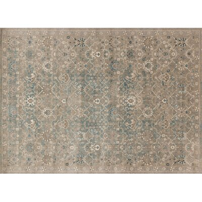 Adelbert Bluestone Area Rug Rug Size: Rectangle 37 x 57