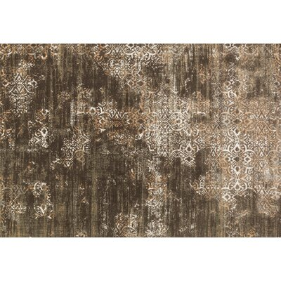 Abella Brown Area Rug Rug Size: Rectangle 53 x 76