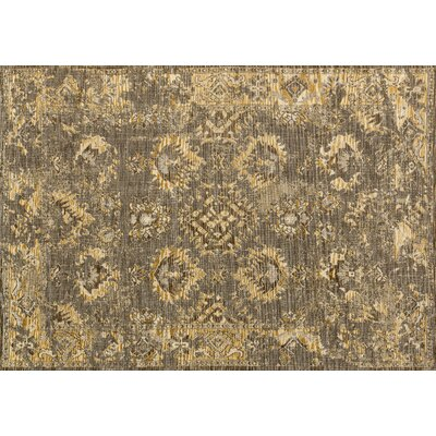 Izmir Brown Area Rug Rug Size: 53 x 76