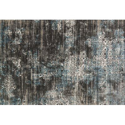 Kingston Charcoal Area Rug Rug Size: 53 x 76