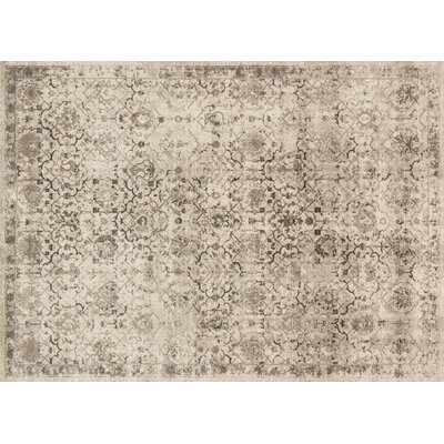 Adelbert Modern Sand Area Rug Rug Size: Rectangle 67 x 92
