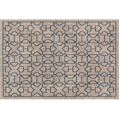 Newport Gray/Blue Indoor/Outdoor Area Rug Rug Size: 22 x 39