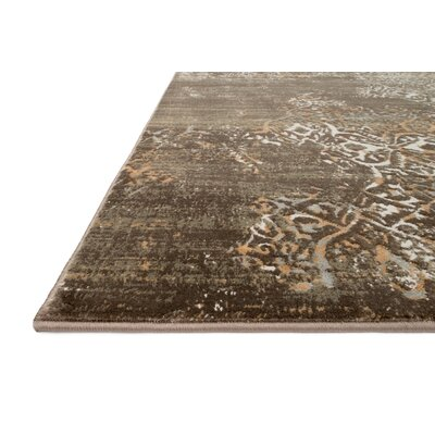 Kingston Brown Area Rug Rug Size: 53 x 76