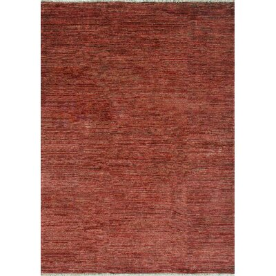 Danek Hand-Woven Red Area Rug