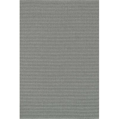 Kirchoff Hand-Woven Graphite Indoor/Outdoor Area Rug