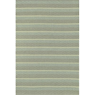 Terra Hand-Woven Lagoon Indoor/Outdoor Area Rug