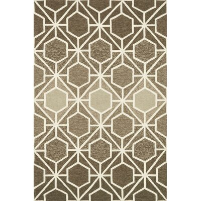 Danko Handmade Brown/Beige Indoor/Outdoor Area Rug