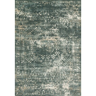 Kingston Storm Area Rug Rug Size: 53 x 76