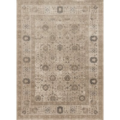 Adelbert Taupe Area Rug Rug Size: Rectangle 37 x 57
