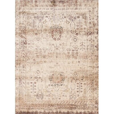 Anastasia Ivory/Brown Area Rug Rug Size: Rectangle 67 x 92